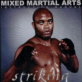 Striking by Anderson Silva