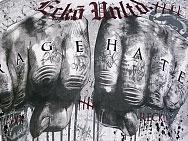 Ecko MMA Fists of Fury T-shirt