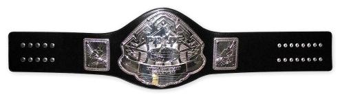 Pride Champions Pride-belt-2