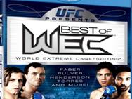 best-of-wec-1