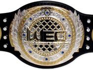 wec-belt-3