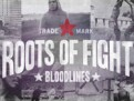roots-of-fight-interview