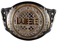 wec-belt