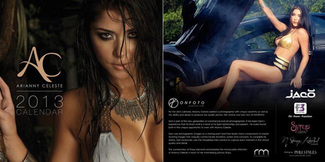 arianny-celeste-2013-calendar