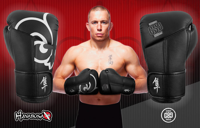 gsp-hayabusa-gloves