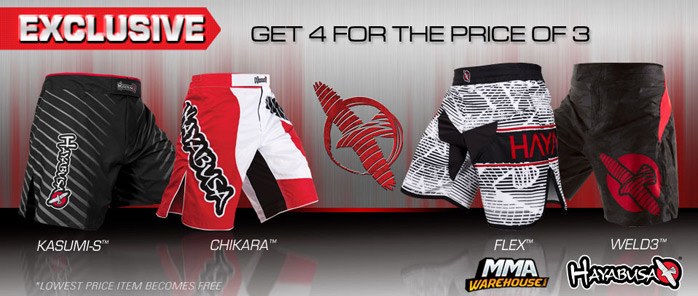 hayabusa-fight-short-deal