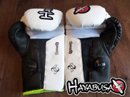 hayabusa-mirai-striking-gloves