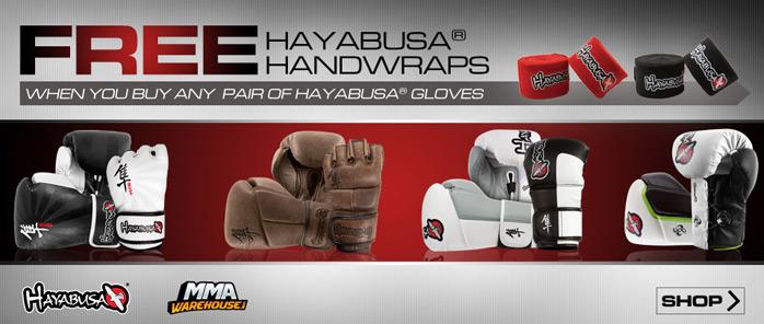 hayabusa-handwrap-deal