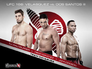 hayabusa-ufc-166-clothing