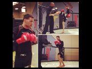 chris-weidman-bad-boyt-shorts