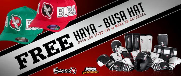 hayabusa-holiday-deal