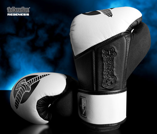 Hayabusa Tokushu Regenesis Boxing Gloves Review