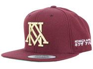 newaza-logo-hat