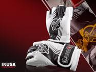 hayabusa-ikusa-recast-mma-glove-4oz