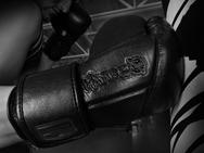 hayabusa-tokushu-regenesis-stealth-gloves