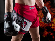 hayabusa-glory-shorts