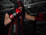 hayabusa-prime-sleeveless-hoodie