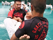 gracie-rank-rashguard