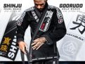 hayabusa-gi-black-friday-sale