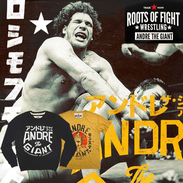 andre the giant fight